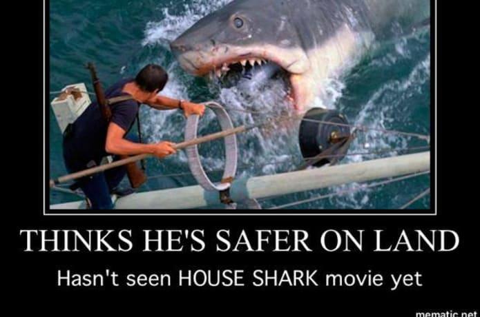 House Shark Indiegogo