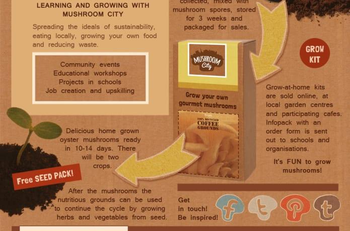 Mushroom City Pop-Up Project   Indiegogo