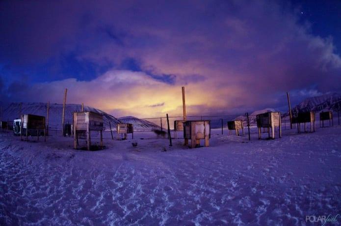 Travel By Dart TV Series - Polar Faith Episode | Indiegogo