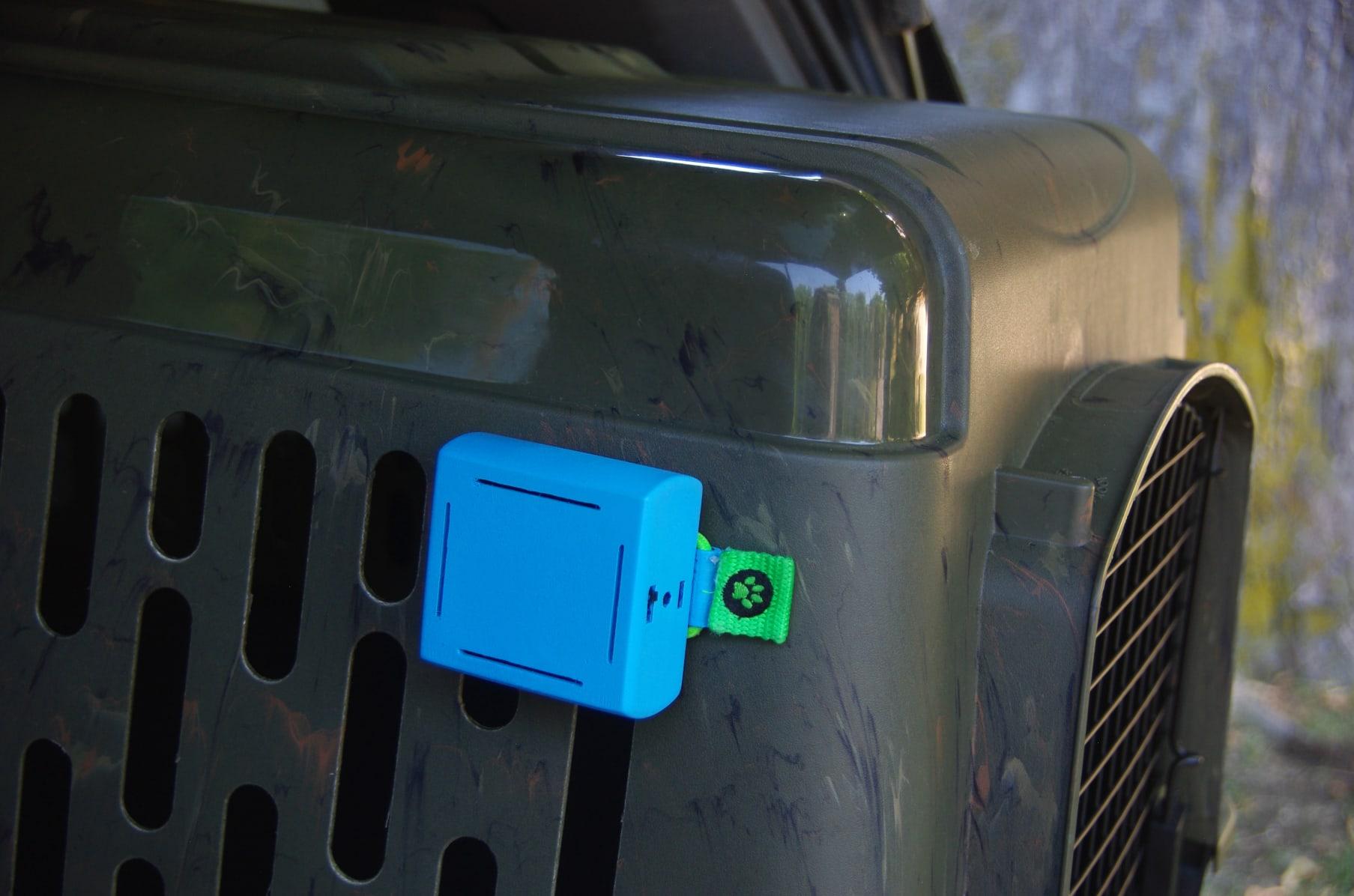 GUARD DOG CAR WARNING NEW WINDOW INSIDE STICKER